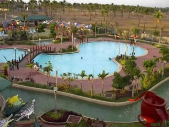 Leisure Coast Resort : Pool