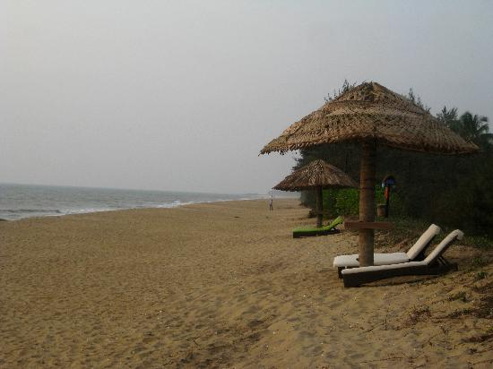 Vivanta by Taj Bekal: Private beach of the hotel with lounge chairs