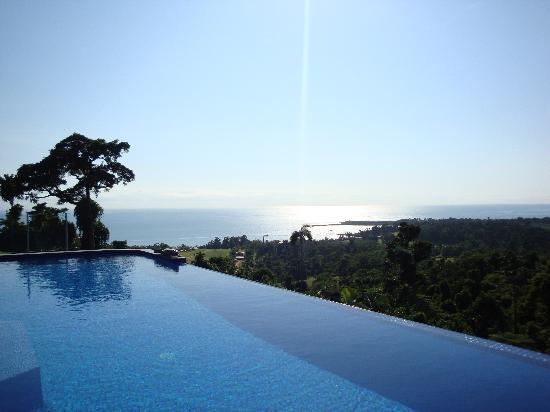 AltitudeOne40: View of the infinity pool