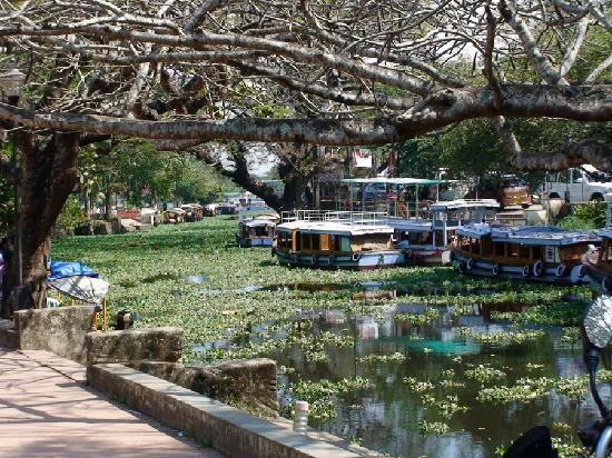 Cherukara Nest: Alleppey canals