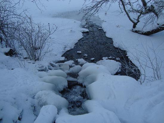 Djurgården: Ice Ice Baby
