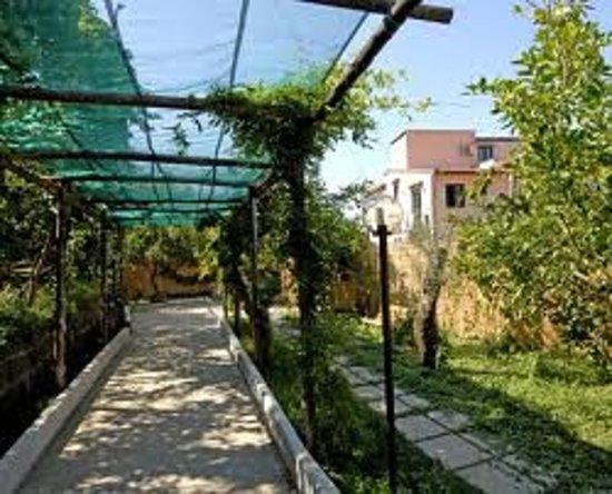 Villa Rosmary