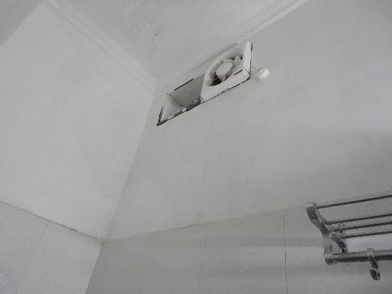 Hotel Delight Inn: Bathroom walls