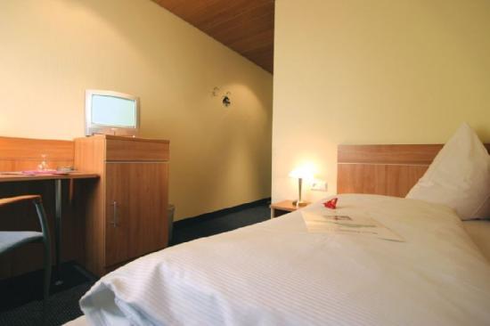 Hotel Zeppelin: Standard Room