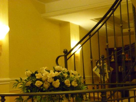 Hotel Corallo: interno