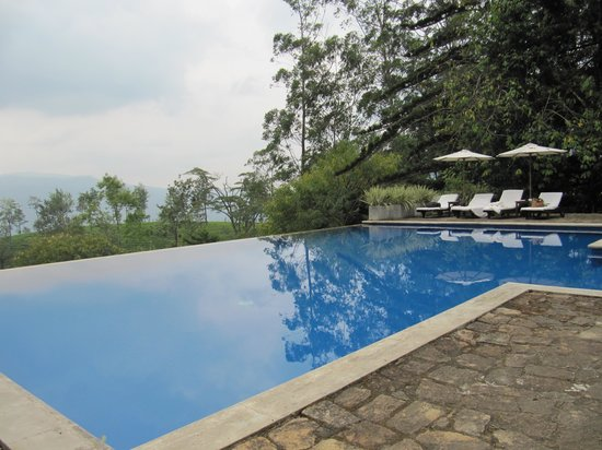 The Lavender House: A view of the infinity pool at Lavender Hse