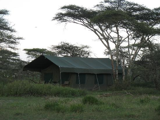 Serengeti Halisi Camp: Das Camp