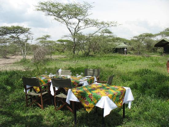 Serengeti Halisi Camp: Mittagessen
