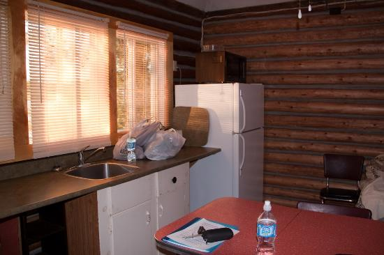 Red Deer Log Cabins and Campground: Cabin 3