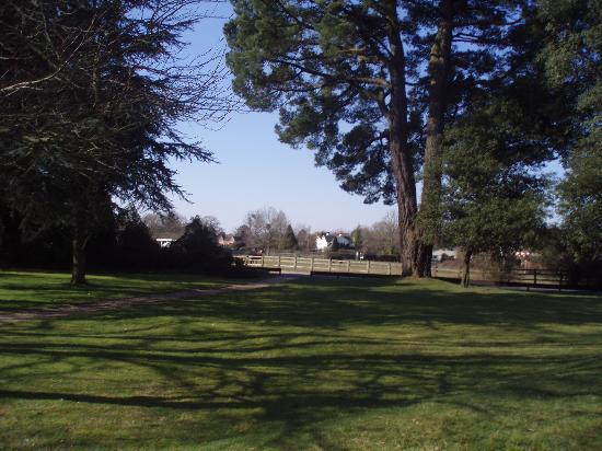 View From Our Room Picture Of Careys Manor Hotel Senspa Brockenhurst Tripadvisor