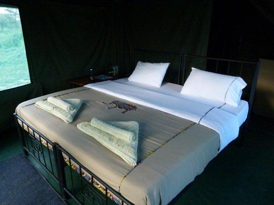 bett im zelt bild von serengeti halisi camp serengeti. Black Bedroom Furniture Sets. Home Design Ideas