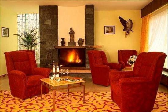 Gasthof Herzogstand: Fireplace