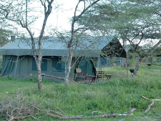 Serengeti Halisi Camp: Unser Zelt