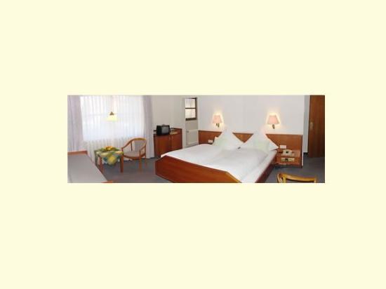 Hotel Löwen: Guest Room