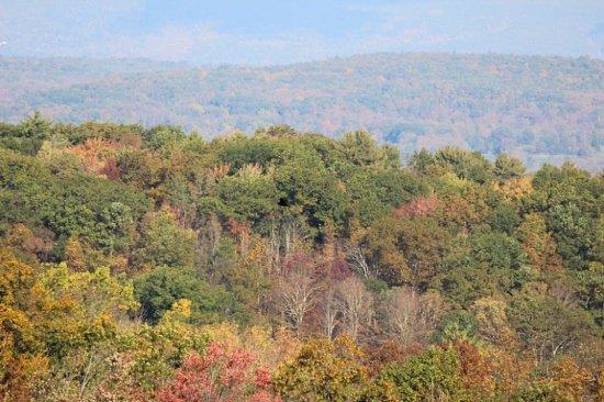 Olivebridge, Estado de Nueva York: the views on the edge of the Country Inn
