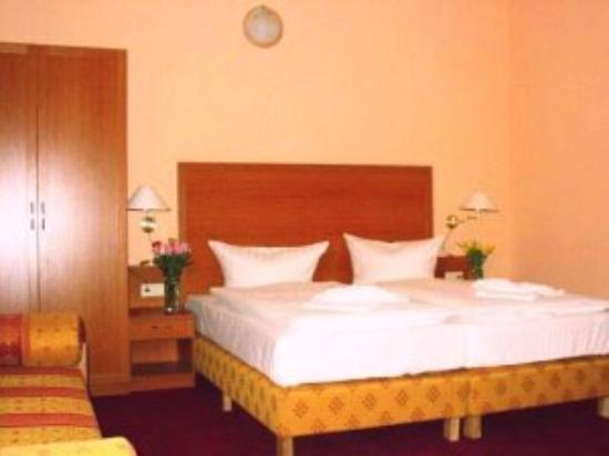 Hotel Aster: Twin Room 2