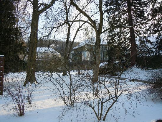 Villa Hedwig Appartementhaus: Umgebung