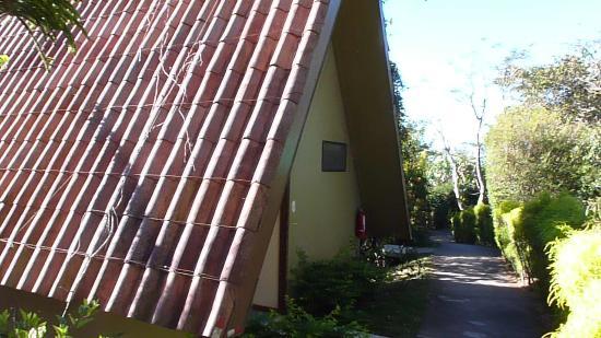 Pura Vida Retreat & Spa: A Frame Room