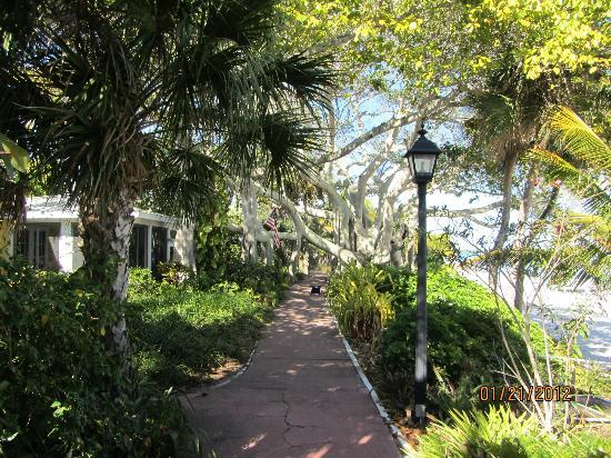 Bokeelia, Floride : The Famous Pink Path