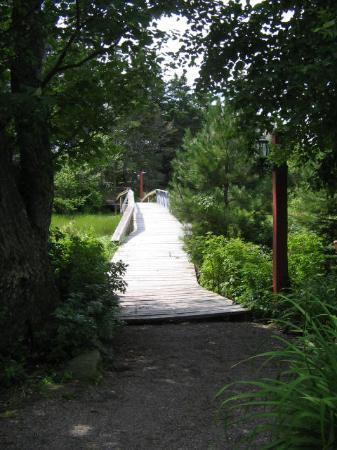 Little Shemogue Inn: The quaint bridge between the original inn and Log Point