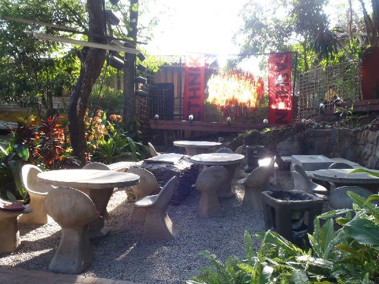 Hive Bar & Restaurant: Jardin-terrasse et la scène