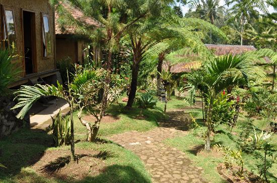 Ijen Resto & Guest House: Ijen resto and guest house garden