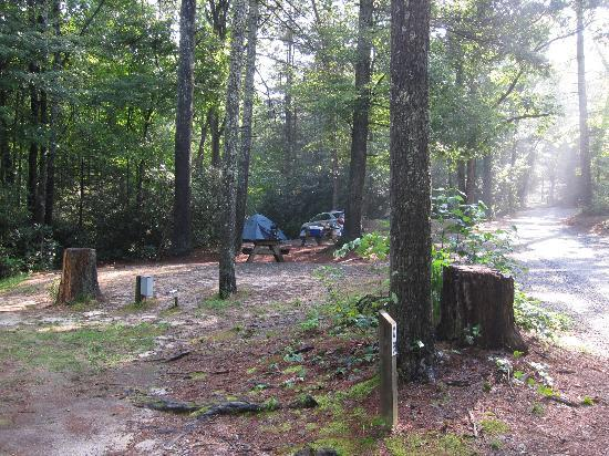 Cascade Lake Recreation Area: Camping sites