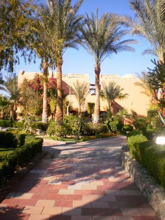 Jaz Makadi Oasis Resort & Club: jardins de l'hôtel