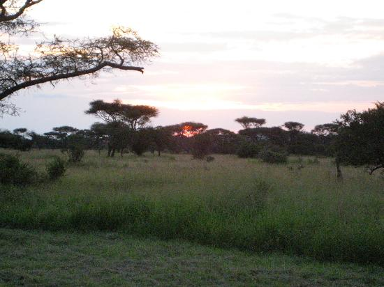 Ikoma Safari Camp: Sunset from Cabin