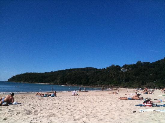 The Hastings Beach Houses: Beach