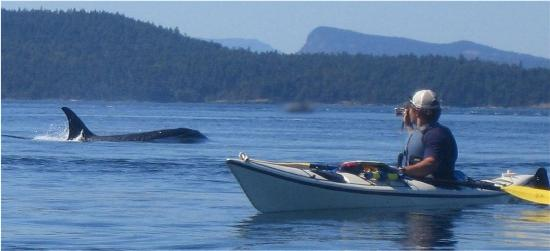Six Day Boat Tour San Juan Islands