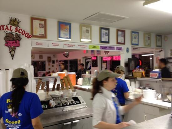 Royal Scoop Homemade Ice Cream: freezers