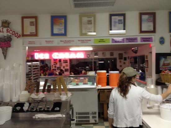 Royal Scoop Homemade Ice Cream: workers scooping