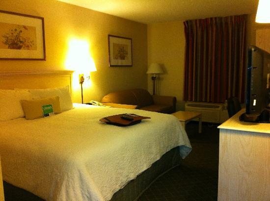 Hampton Inn Winchester-University/Mall Area: Comfy bed and spacious room with sofa
