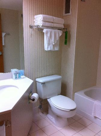 Hampton Inn Winchester-University/Mall Area: Very clean bathroom