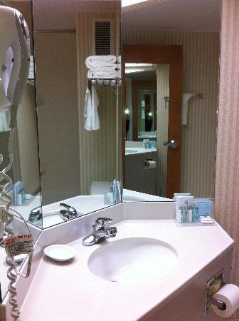 Hampton Inn Winchester-University/Mall Area: Vanity area in the bathroom
