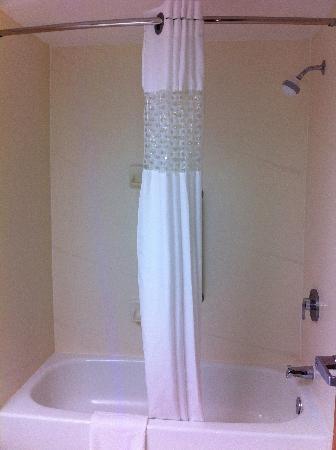 Hampton Inn Winchester-University/Mall Area: Shower