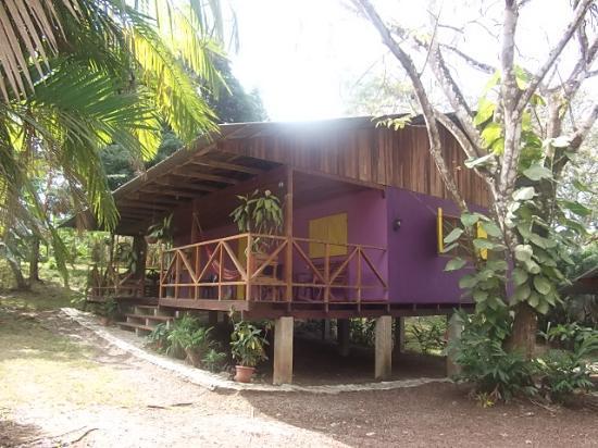 Hotel Casacolores: Casa morada.. una de las màs lindas!
