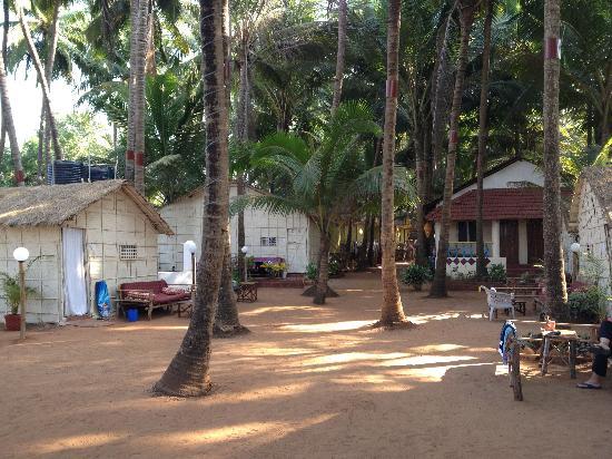 Dunes Holiday Village: beach huts at Dunes