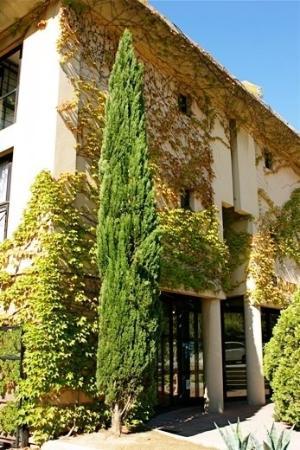 Appart'Hôtel Odalys Les Floridianes : EXTERIOR