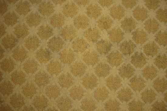 Country Inn & Suites By Carlson, Galveston Beach: some stains on the carpet