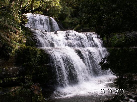 Liffey Falls: Main falls