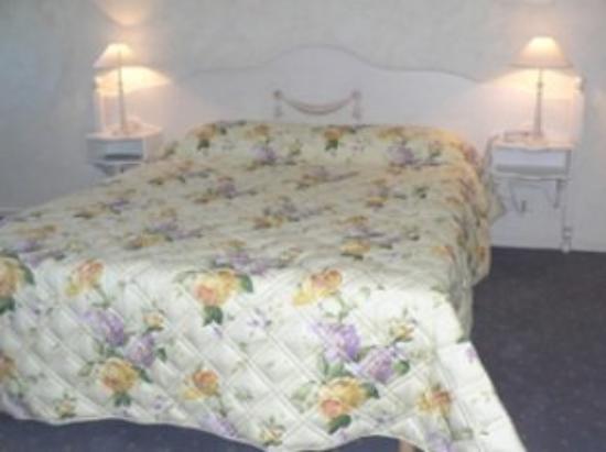 Hotel Au Sans Souci: Doubleroom