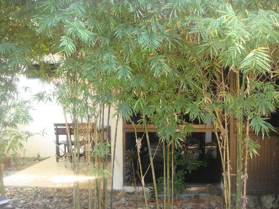 Thalassa Village Resort : petite terrasse attenante à une des chambres