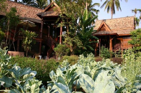 The Dhara Dhevi Chiang Mai: Villa