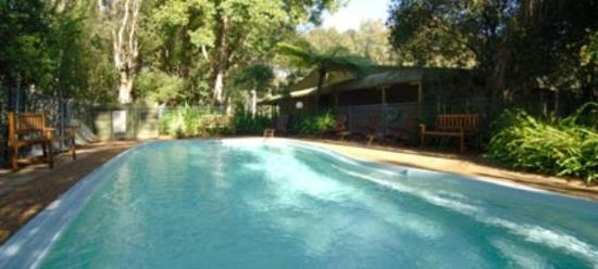Tea Gardens Country Club & Motel: Pool