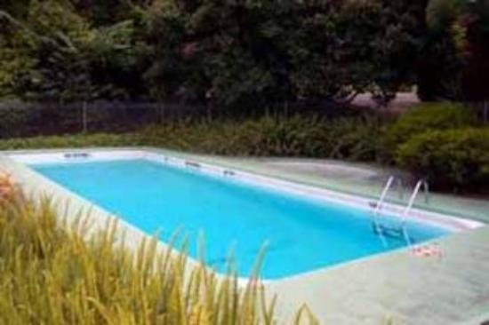 Comfort Inn Moe: Pool