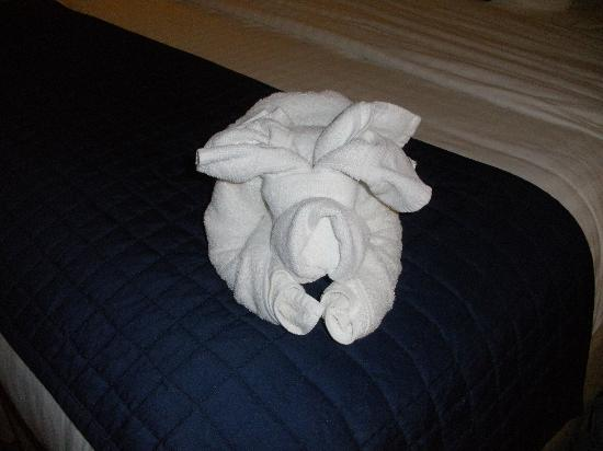 Holiday Inn Manassas - Battlefield: towel doggy - greets you when you come in...:-)