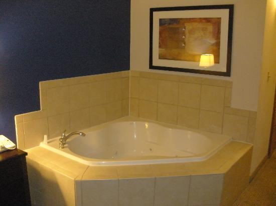 Holiday Inn Manassas - Battlefield : whirlpool!