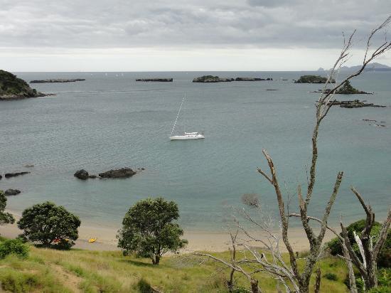 Bay of Islands Sailing/Gungha II: Gungha II from the hill on an island